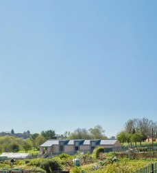 Geraghty-Taylor-Architects-GOOD-FOOD-MATTERS-View-from-Road